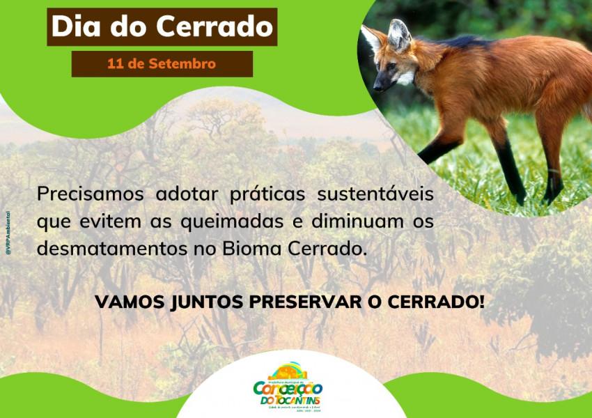 11 de Setembro, Dia Nacional do Cerrado